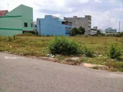 Bán đất nông nghiệp tại ấp Thanh Tuấn, xã Thanh Lương, huyện Bình Long, tỉnh Bình Phước