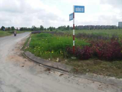 Cơ hội sở hữu mảnh đất vàng tại Bình Minh - Vĩnh Long