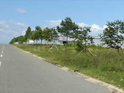 Bán gấp lô đất ở Thị Xã Dĩ An