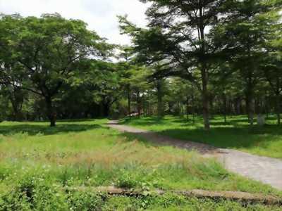 Dự án Pearl Riverside  Giang Điền, Trảng Bom, Đồng Nai