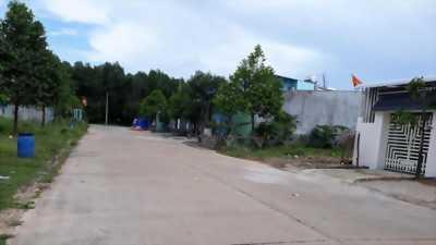 Cần tiền cưới vợ cho con , cần bán gấp lô đất 450 m2 tại Tân Uyên, có sổ riêng, giá  356TR/150M2
