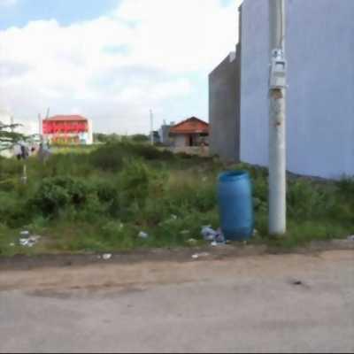 Bán gấp 3 lô đất ngay mặt tiền đường TC2, Phường Mỹ Phước
