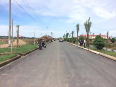 Đất đầu tư sinh lời cao đường Nguyễn Văn Bứa, xây tự do