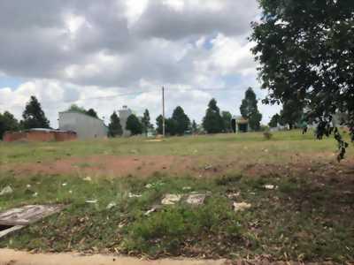 Bán lô đất gần trường đại học Thủ Dầu 1 Bình Dương
