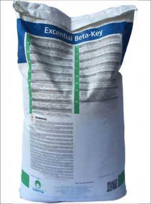 Diệt ốc đinh Excential Beta Key Cách diệt ốc đinh
