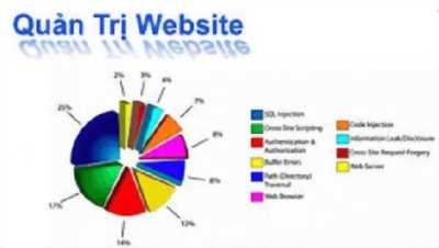 Dịch vụ quản trị website chuyên nghiệp, hiệu quả nhất