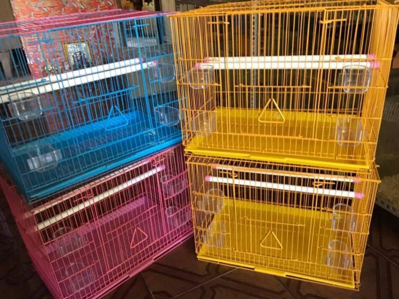 Nhà hamster nhựa poli