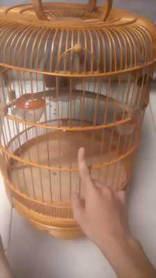 Cần bán cái lồng chim chào mảo còn mới