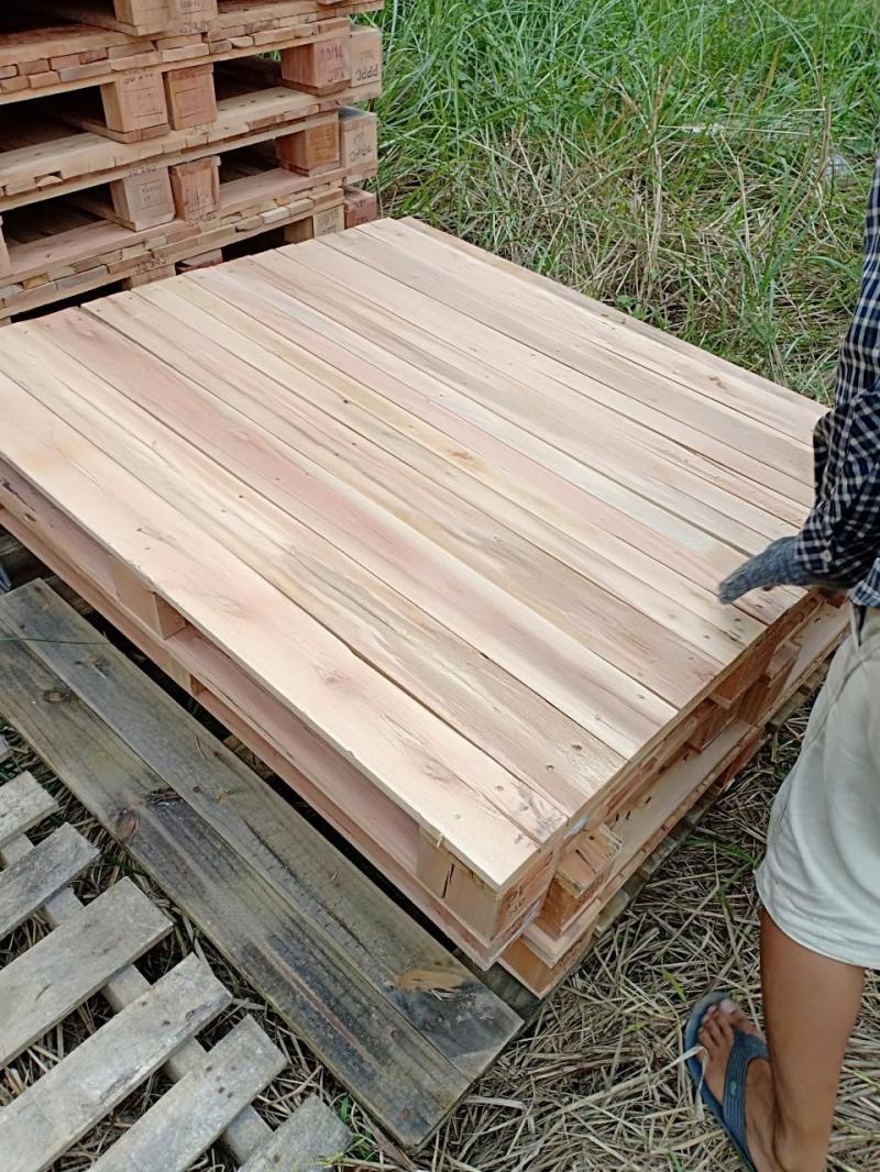 Pallet nhựa ,pallet gỗ thông đà nẵng