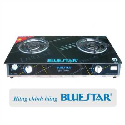 Bếp Gas Âm , Dương Bluestar