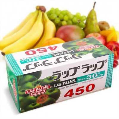 Màng bọc thực phẩm Las Palms 450 Size 30 cm GD0010