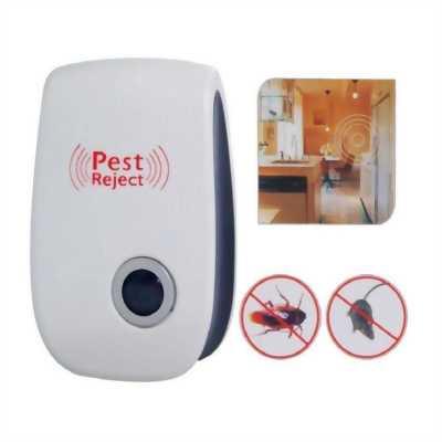 Chuyên bán Máy Đuổi Chuột, Gián, Muỗi Và Côn Trùng Pest Rejec