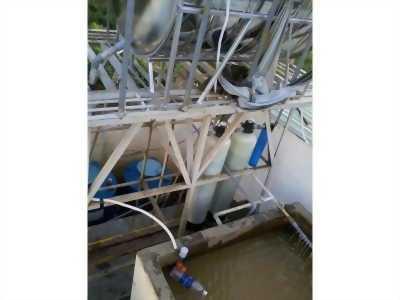 Tư vấn xử lý nước giếng bị nhiễm phèn thành nước sinh hoạt