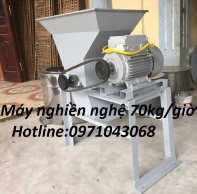 bán máy nghiền nghệ chất lượng cao giá rẻ giao hàng toàn quốc