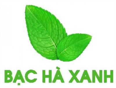 Bạc Hà Xanh - nhà phân phối sỉ nguyên liệu trà sữa lớn nhất miền Trung