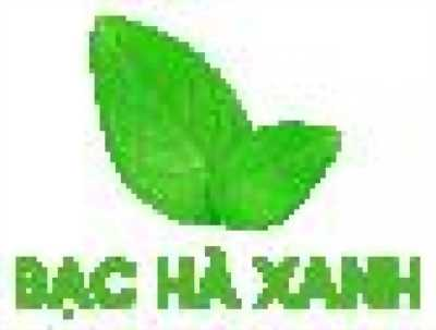 Bạc Hà Xanh cung cấp nguyên liệu trà sữa thương hiệu chất lượng, uy tín