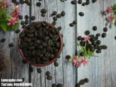 Cà phê hạt ngon pha máy bán giá sỉ tại Thủ Dầu Một, Bình Dương