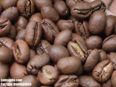 Cung cấp giá sỉ café rang xay nguyên chất tại Thủ Dầu Một, Bình Dương