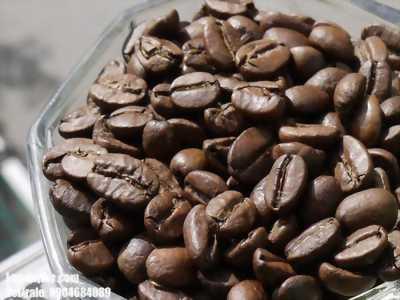 Cà phê rang xay Culi, Robusta cung cấp giá sỉ tại Thuận An, Tân Uyên, Thủ Dầu Một, Bình Dương
