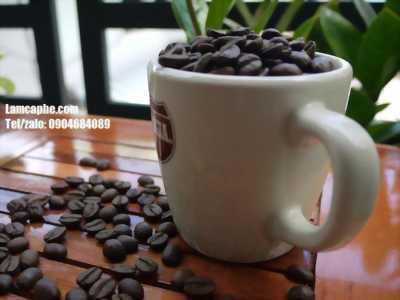 Cung cấp số lượng lớn cà phê hạt rang sẵn nguyên chất tại Bình Dương, Thủ Dầu Một
