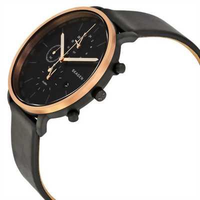 Đồng hồ Skagen SKW6300