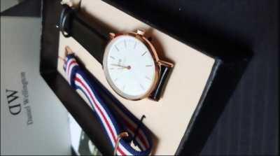 Đồng hồ D-W dây da
