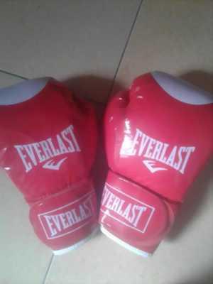 Găng tay Boxing (Mới)