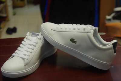 Giày Lacoste hàng chính hãng.