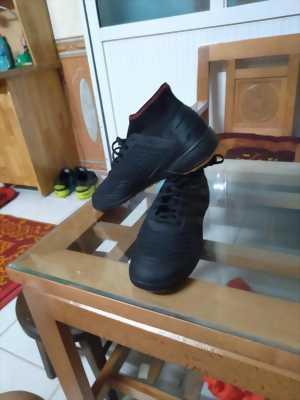 Giày đá bóng bên úc