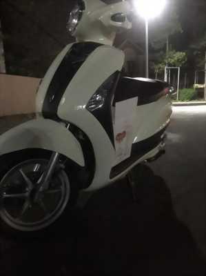 Cần bán nhanh Yamaha Grande màu trắng