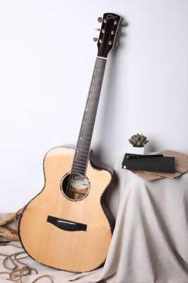 Guitar Westone
