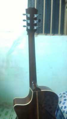 Guitar gổ điệp