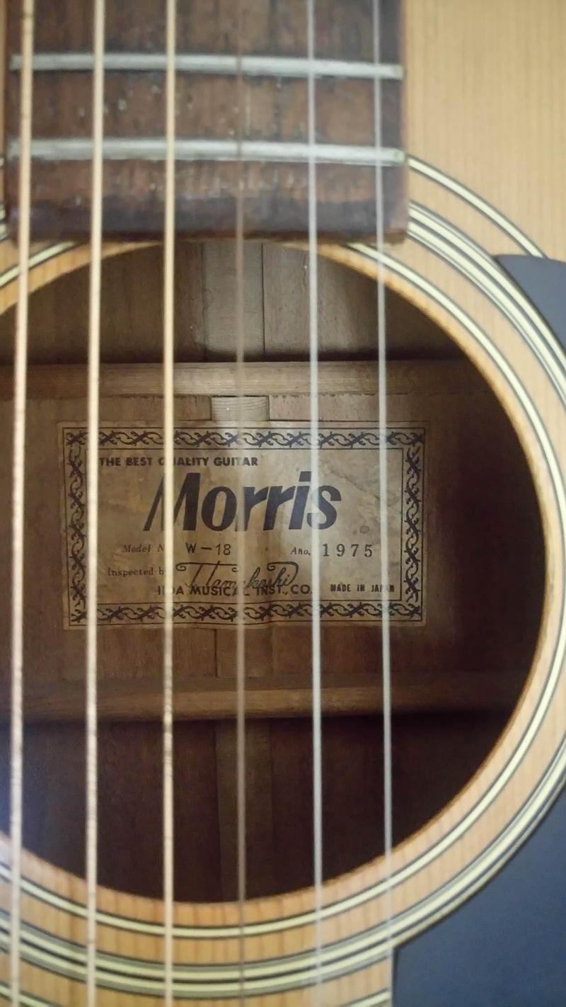 Guitar Morris W18 tem vuông