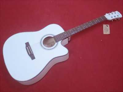 Đàn guitar acoustic Diduo , hàng nhập chính hãng sáng bóng J72-JM221