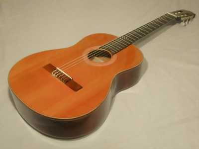 Muốn mua đàn guitar