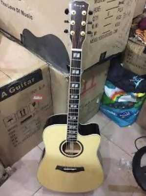 guitar enya