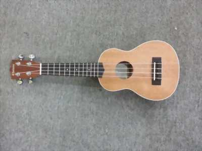 Guitar acoustic hàng nhập