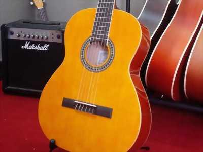 Đàn guitar classic Grape Tây Ban Nha M2-TR522 cam kết chính hãng