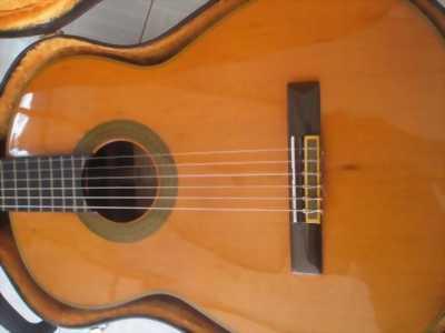 Bán guitar cd60 fender mới thùng to giá rẻ
