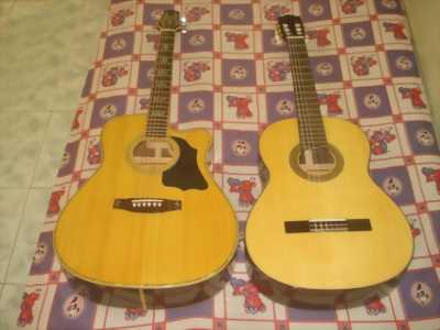 Đàn guitar morris w20 newlike