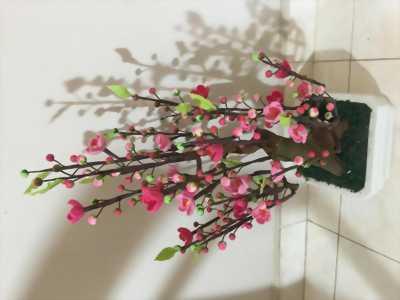 Hoa đào bằng len sợi