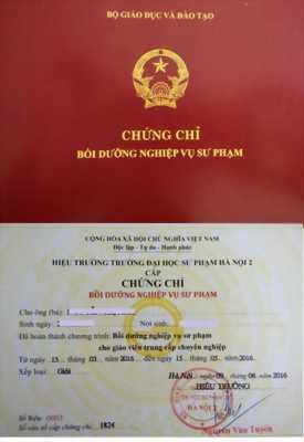 Học chứng chỉ nghiệp vụ sư phạm TCCN do trường đại học sư phạm Hà Nội 2 cấp bằng.