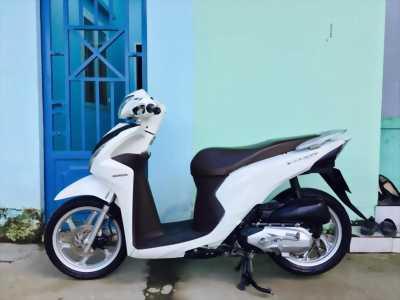 Vision 110 trắng mẫu mới