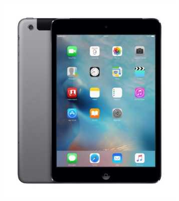 Ipad mini2 4g wifi
