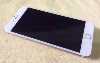 Iphone 6 plus màu Gold