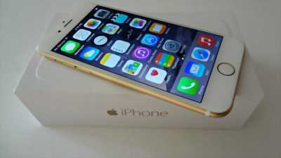 iPhone 6 quốc te gold 16g