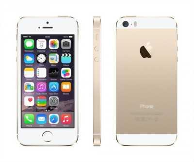 Apple Iphone 5S Màu vàng gold