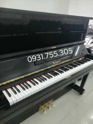Cho thuê đàn Piano tập đàn đệm hát tại Đô Trưởng Quận 6