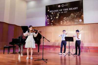 Chiêu sinh lớp Violin giá rẻ tại Quận 6