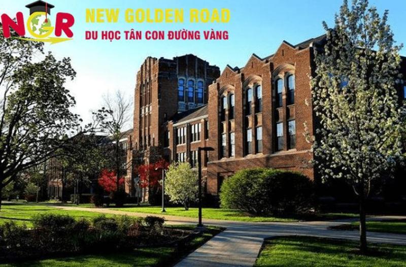 Học bổng hấp dẫn tại đại học Central Michigan – đóng học phí bằng sinh viên bản địa